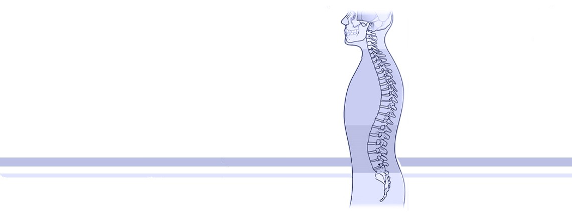 spine header - Know your spine!