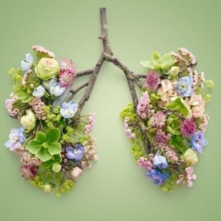 learn to BREATH PRODUCT 4 320x320 - Wellness for All